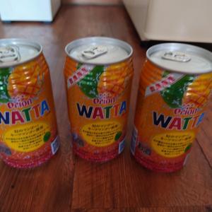 WATTA数量限定キーツマンゴー☆