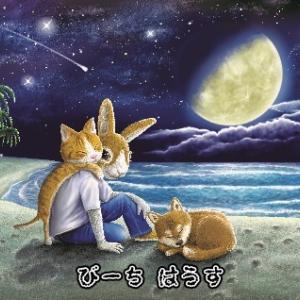 TVアニメ「呪術廻戦」を観る時のもうひとつのたのしみが・・・・