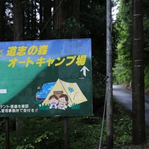 雨のキャンプもまた楽し 道志の森
