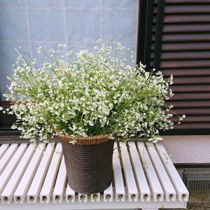 【お花+庭仕事】ハルジオンの豪華花束&草むしりその後~♪