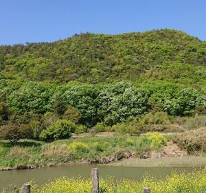 荒城に月22 新庄山城