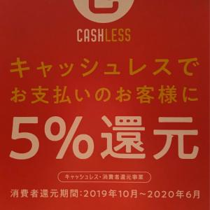 【期間限定】今だけお得な5%ポイント還元、見逃せません!