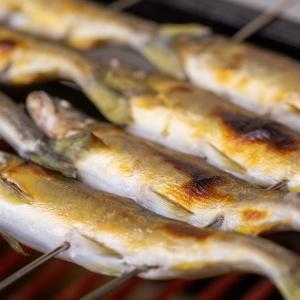ふわっふわの鮎の山椒煮が出来上がる秘密、教えます!