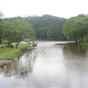 【愛知】段戸裏谷原生林「きららの森」訪問を愛知県民にお勧めしたいたった1つの理由!