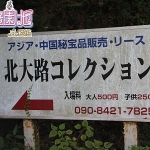 【静岡】羅漢像+滑り台の残骸+マンモス=カオス?!北大路コレクションへ案内してもらいました。