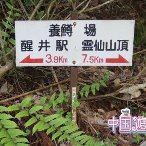 【滋賀】グーグルマップを見ていたら面白そうだったので、霊仙山へ登山
