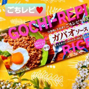 ハウス食品 ごちレピライス 最高(⋈◍>◡<◍)。✧♡ 簡単! ガパオソース