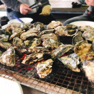 同級生と牡蠣道場でヘベレケな牡蠣の暴れ食いからの~茹でタコになるパターン(爆笑)
