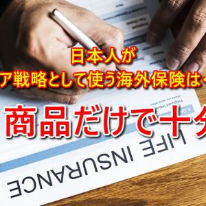 日本居住者がコア戦略として使う海外保険は1商品だけで十分!iDeCoと海外保険で完結