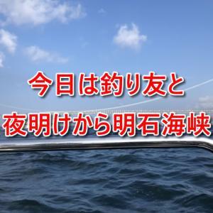 今日は釣り友さんたちと夜明けから明石海峡へ行っていました!