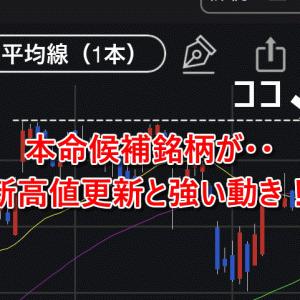 【米国株】ポートフォリオ内の本命候補銘柄が新高値更新と強い動き!
