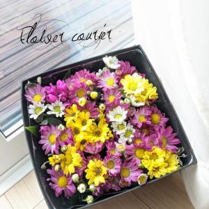 いばらきの花の宅配便〜その2