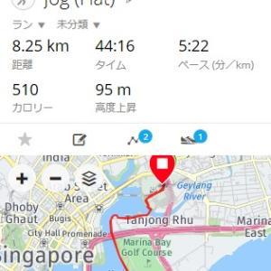 シンガポールマラソン:ハーフの部のスタートまで