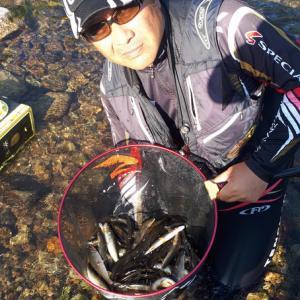 鮎  Rd29  爆釣日本海側河川
