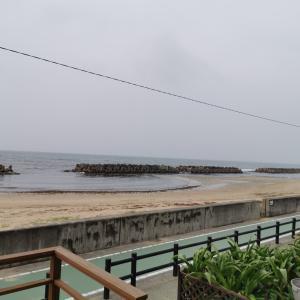今日の波津海岸