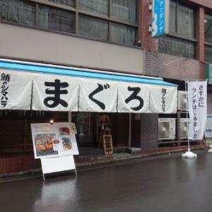 鮪のシマハラ(神保町)/ ばらちらし