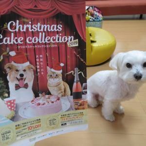 クリスマス商戦~♪