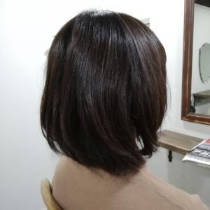 髪質が固い、膨らみやすいタイプのくせ毛さん♪&熱帯魚さん♪