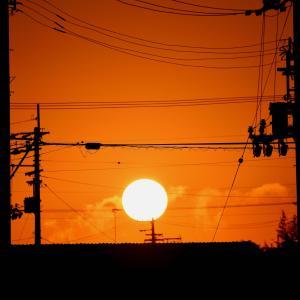 和田島の朝