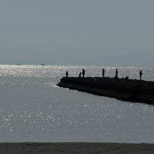朝の海 Part3