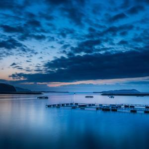 浅川漁港の朝
