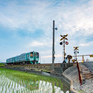 水田に写り込む列車
