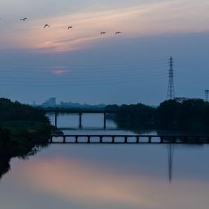 鮎喰川の朝