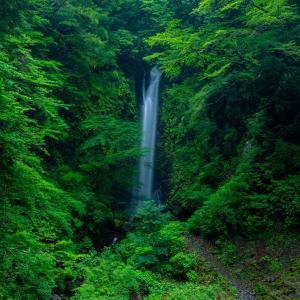 夏の神通滝