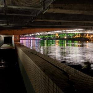 雨の新町川