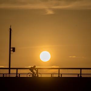 しらさぎ大橋と夕陽