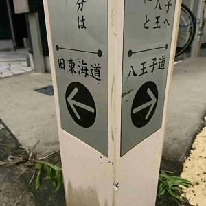 神奈川往還てくてく歩き 01③【~松原商店街~芝生の追分】