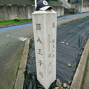 神奈川往還てくてく歩き 01⑥ 【~正観寺~西谷】