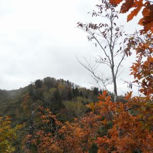 三方岩岳から馬狩荘司山2R011020 白山市