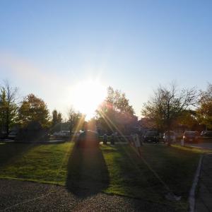 今日のお散歩 R011113 野々市市