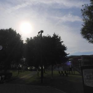 今日のお散歩 R0207011 野々市市