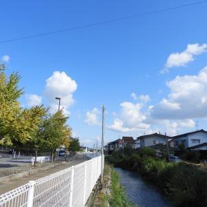 今日のお散歩 R020922 野々市市