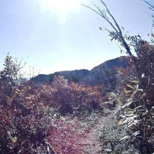 2020三方岩岳(標高1736m)~馬狩荘司山(1704m) R21021 白山市