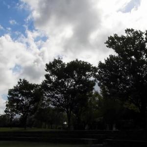 今日のお散歩 R030922 野々市市