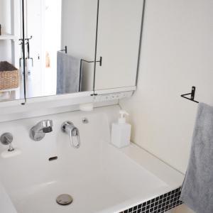小さいけれどワザあり!洗面所掃除が劇的にラクになったもの*