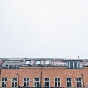 涙の日曜と雪のベルリン