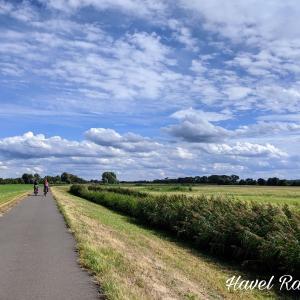 【ブランデンブルク×サイクリング】ハーフェル川沿いは動物たちの楽園