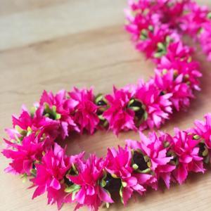 鮮やかな色で......菊(クリサンセマム)
