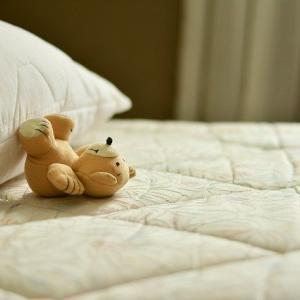 大物の片付けは若いうちにする。ベッドを捨てた方法