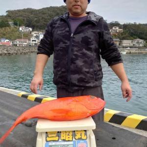 12月11日(水)キンメ釣果