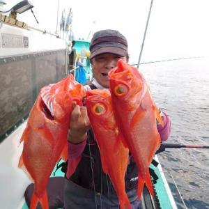 7月31日(金)新島キンメ釣果