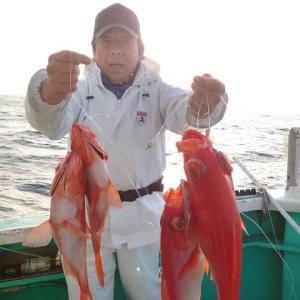 3月31日(水) 新島キンメ釣果
