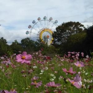 熊本市動植物園の植物園