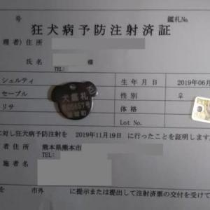 狂犬病予防接種 と 登録