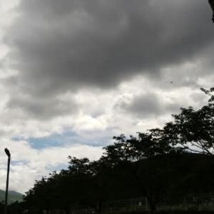 今日の天気は?