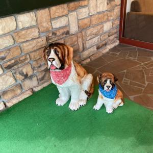 レオとリサがお気に入りのペットと泊まれるホテル②